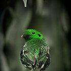 Curious Green-bird by Virag Anna Margittai