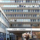 Barum's Bruin - (Civic Centre Building Barnstaple) by Simon Groves