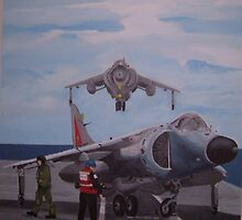 Steve working on Harrier HMS Illustrious by sueangel
