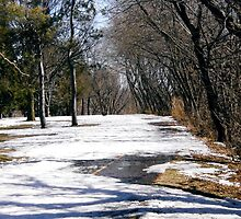 Bike Path, Ottawa, ON by Shulie1