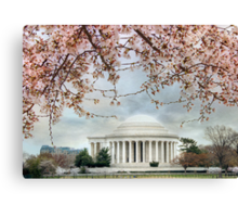 Spring is in the air! Canvas Print