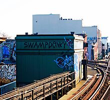 NYC Subway Graffiti-Brooklyn by photolyns