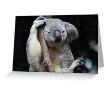 Can't You See I'm Sleeping! Greeting Card