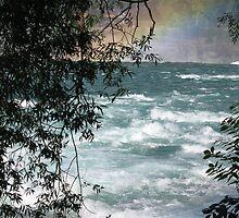 Niagara Rapids by garthglaz