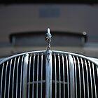 Car nose by Jouko Mikkola