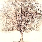 Winchcombe Tree by doatley