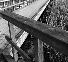 Deserted Winter Boardwalk in RBG by ChristianeW