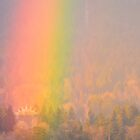 Find The Pot of Gold Inside the Rainbow! by Carol Clifford