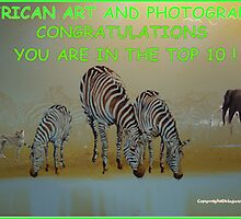 African Art & Photography - Challenge Banner by Magaret Meintjes