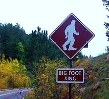Bigfoot Crossing by rosaliemcm