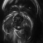 Tibetan Terrier by John Dickson