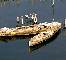 Two Canoes by Stephen  Saysell