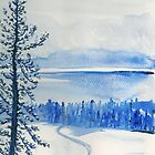 Winter in the Shuswap by Lynda Earley