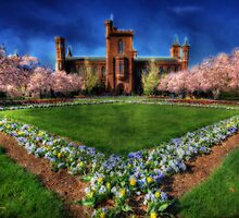 Smithsonian Castle Garden by Shelley Neff