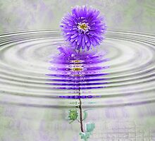 Purple Ripple by Maria Dryfhout