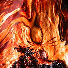 In Flames by Pandrot