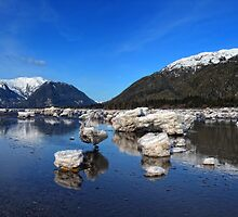 Skeena Low Tide by EagleHunter