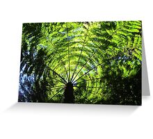 Light Through the Fronds Greeting Card