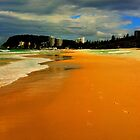 Burleigh Beach  by Virginia McGowan