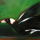 Magpie by Lloyd Foye