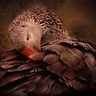 Chocolate Goose by Melinda Stewart Page