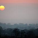 Sunset Sun by Anthony Thomas