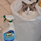 Housecleaning Day Assistant! by Carol Clifford