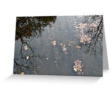 Underwater Garden Greeting Card