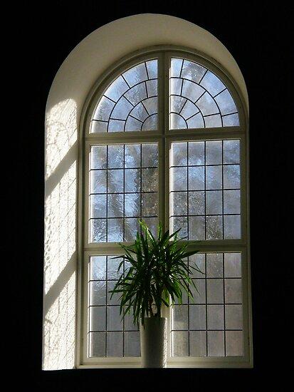 Church window by João Figueiredo