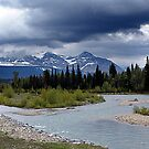 Near Payne Lake, Alberta by Jann Ashworth
