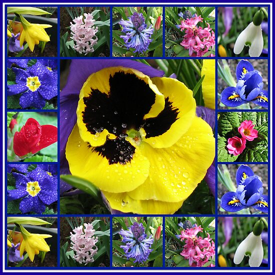 Riot of Colour Spring Flowers Collage by BlueMoonRose