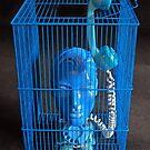 Blue Phone. by - nawroski -
