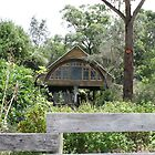 MOGO Modern Cabin in the Bush by aussiebushstick