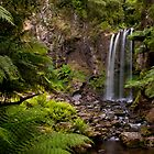 Hopetoun Falls by Paul Oliver