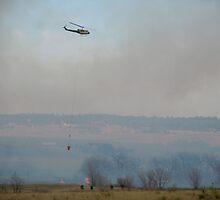 Burntree Brushfire 3/24/11 Two by Marijane  Moyer