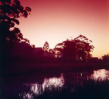 Minnawarra Park evening by BigAndRed