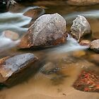 Delatite River, Merimbah, Victoria by Neville Jones
