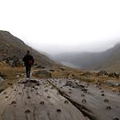 Glendalough walking planks by contradirony