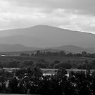 Yarra Valley by awursterphotos