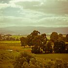Yarra Valley Velvia by awursterphotos