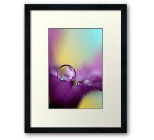 Drops of Spring Colour Framed Print