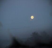 Moon Black Smoke Wire by Barnewitz