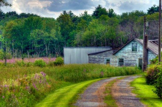 Field of Dreams Gone By by Monica M. Scanlan