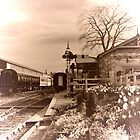 Tenterden Town railway station by larry flewers