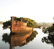 HOMEBUSH BAY SHIPWRECKS by briangardphoto