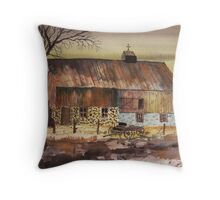 Afternoon Storm Passed Throw Pillow