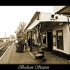 Bodiam Station  by larry flewers