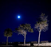 Moonlit Park Side  by Philtography