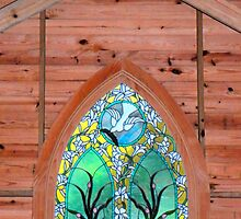 Stained Glass, Old Chapel by Rosalie Scanlon