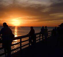 *•.¸♥♥¸.•* .(。◕‿◕。) Enjoying The Sunset *•.¸♥♥¸.•* .(。◕‿◕。) by ✿✿ Bonita ✿✿ ђєℓℓσ